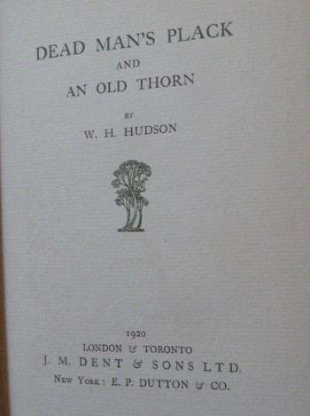 Image for Dead man's plack: And An old thorn