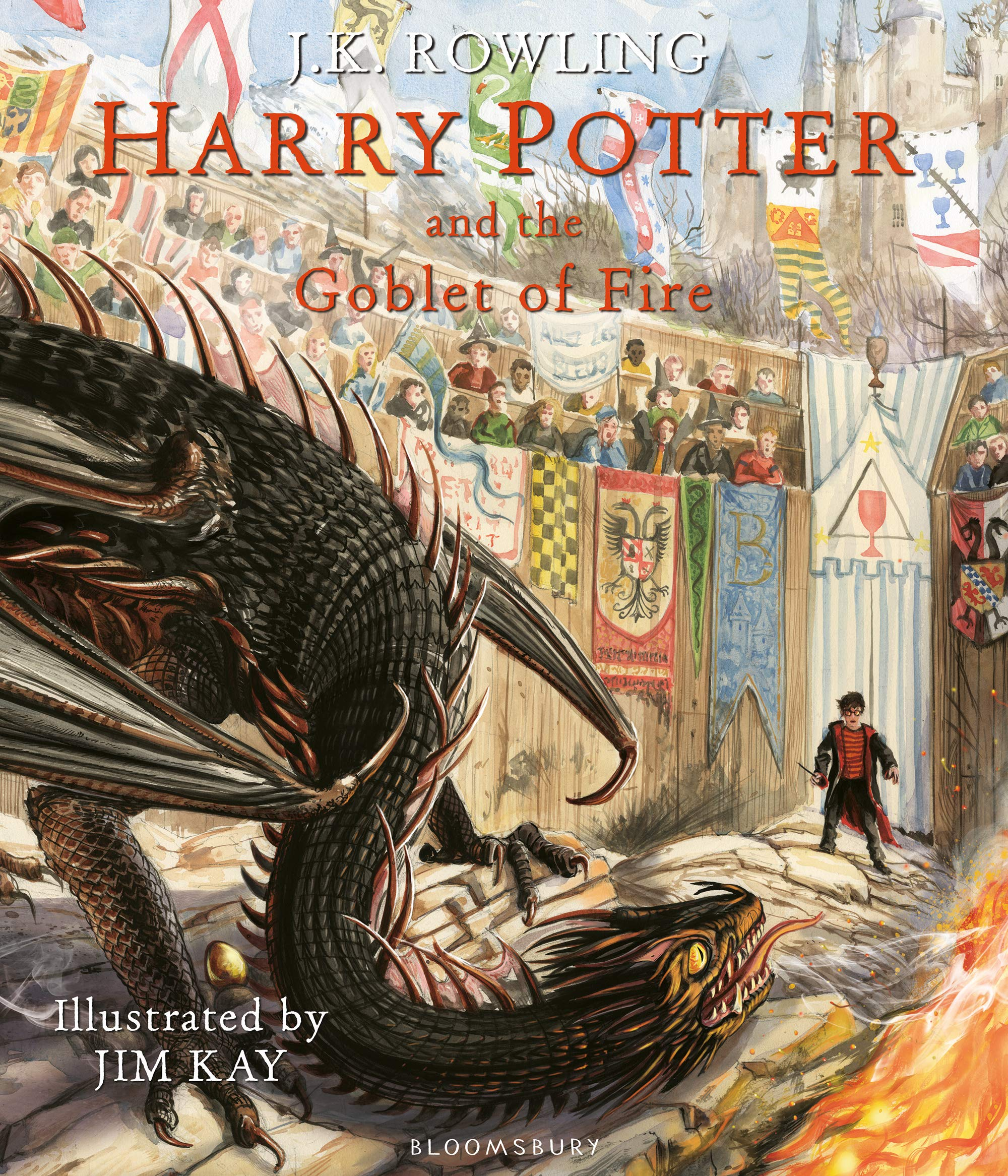 Image for Harry Potter and the Goblet of Fire: Illustrated Edition