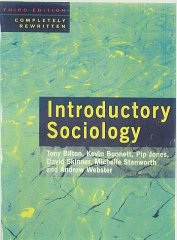 Image for Introductory Sociology