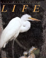 Image for Life: An Introduction to Biology