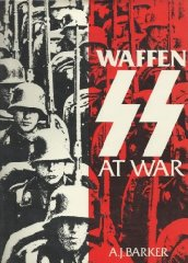 Image for Waffen-SS at War
