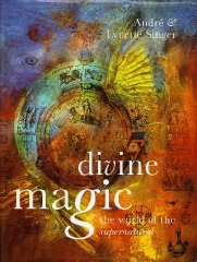Image for Divine Magic: The World of the Supernatural