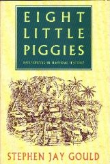 Image for Eight Little Piggies Reflections In Natu