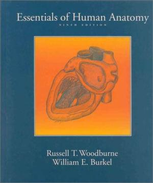 Image for Essentials of Human Anatomy