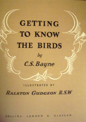 Image for Getting to Know Birds