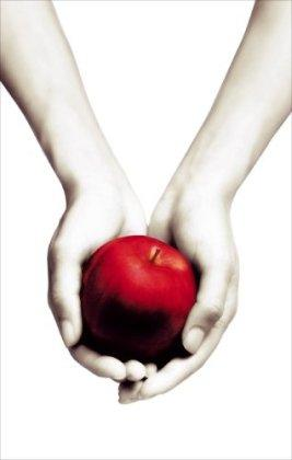 Image for Twilight (Twilight Saga)